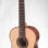 HILL GUITAR CO. – PERFORMANCE MODEL – Spruce and Indian