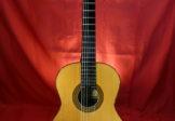 PEDRO TOLEDO – Spruce and CSA – 1999